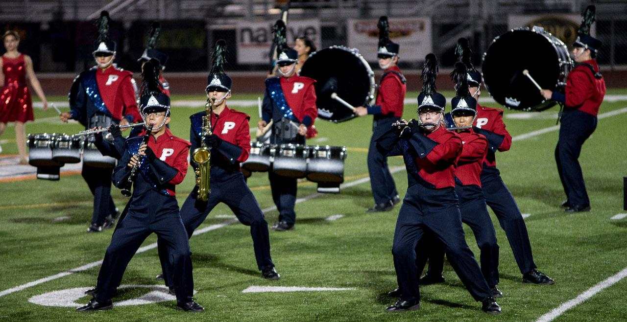 The Puma Regiment